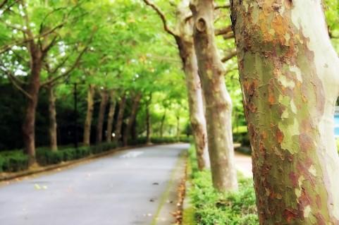 胃腸科内科北川医院の写真1